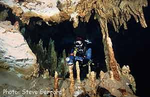 Ponderosa cave