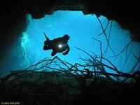 Highlight for Album: The dreamworld of Caverns